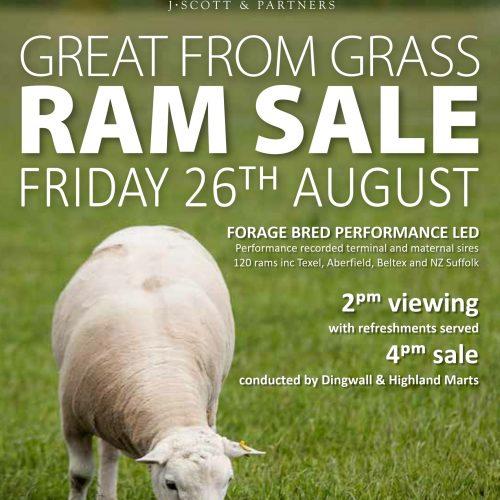 2016 ram sale poster